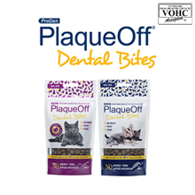 PlaqueOff dental bites ||